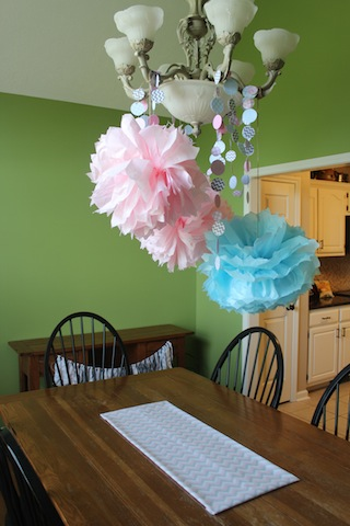 gender reveal poms and garland