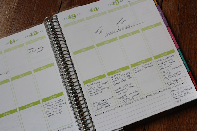 tracking your baby's milestones in your planner