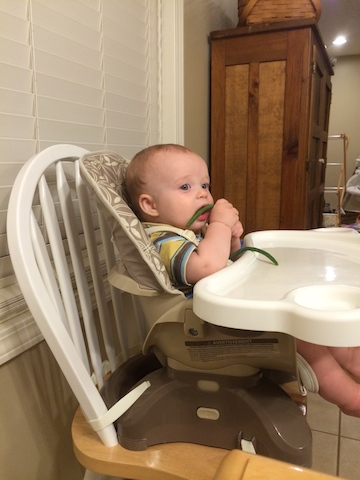 baby led weaning green beans
