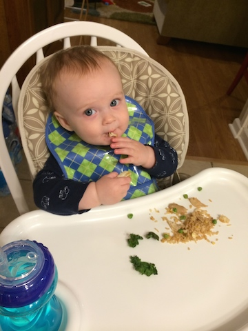 baby led weaning fried rice