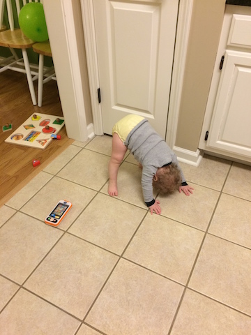 baby downward dog