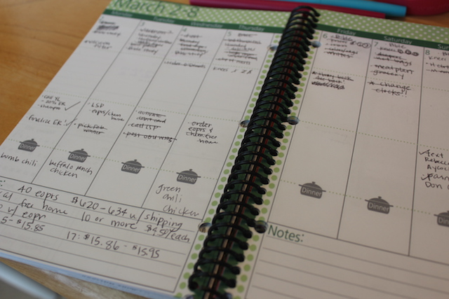 how i use thepolkadotposie planner