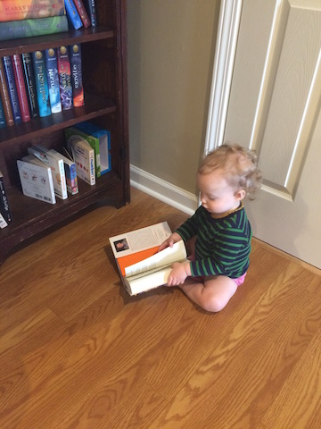 toddler trying to read Harry Potter