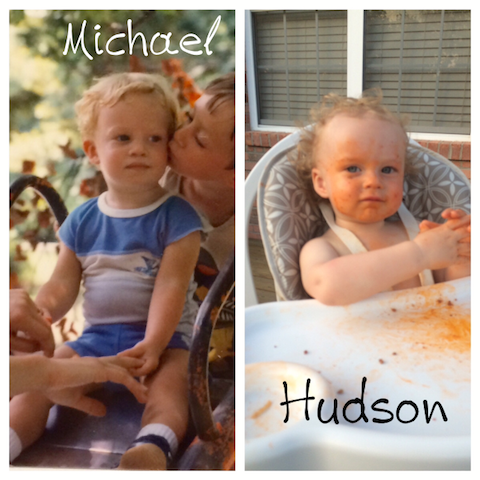 Michael and Hudson comparison