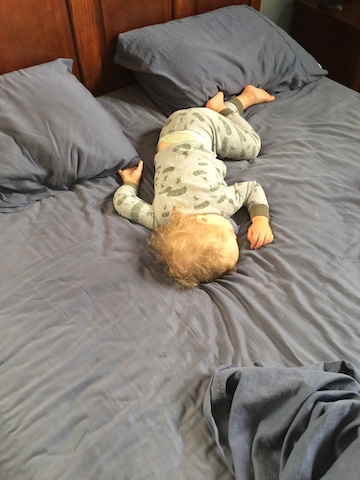 taking up the whole bed