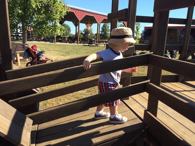 playing at Jackson's Orchard