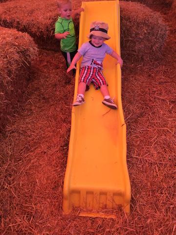 sliding at Jackson's Orchard