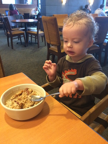 oatmeal at Panera