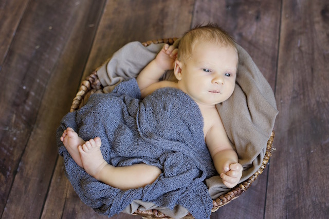 newborn pictures in a basket