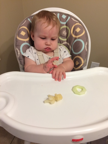 baby led weaning 7 months old