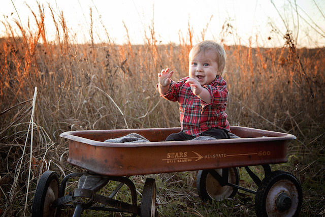 fall family pictures in a wagon
