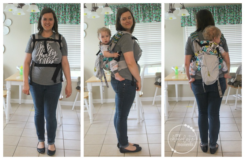 Lillebaby Review: Lillebaby Complete original Rowdy Raccoons back carry