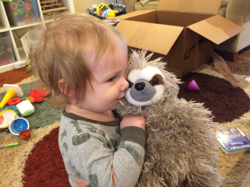 March family update - sloth stuffed animal