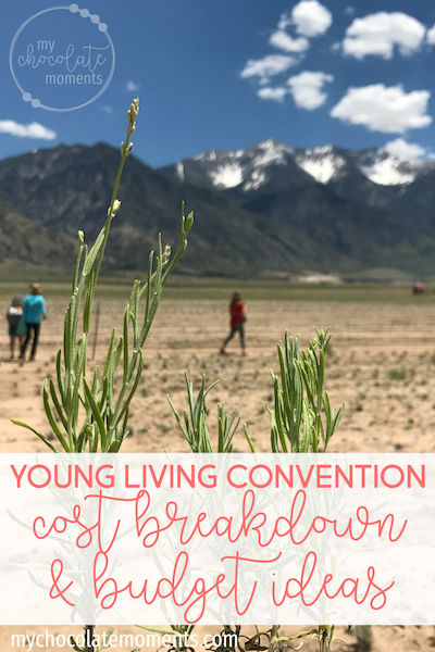 Young Living convention cost breakdown and budget suggestion: How much to save each month in order to attend convention | Young Living | essential oils | YNAB | budgeting | savings | travel