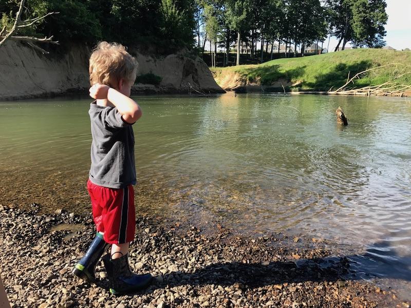 throwing rocks at the creek